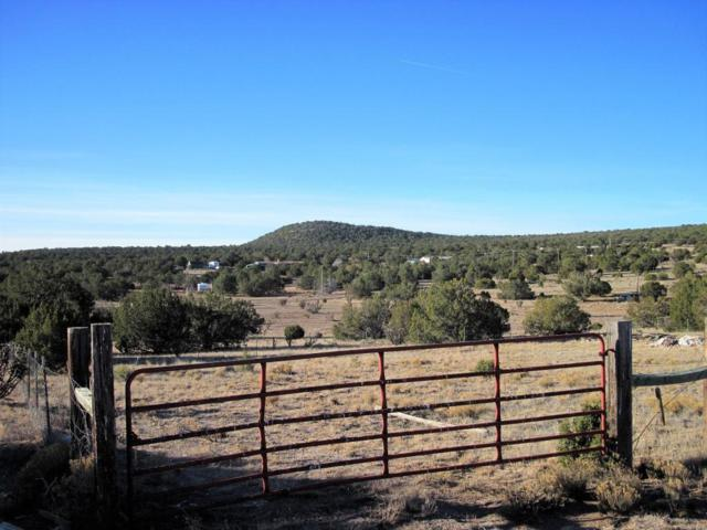 0 Cedar Hills Lane, Moriarty, NM 87035 (MLS #910809) :: Campbell & Campbell Real Estate Services