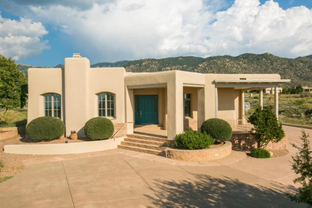 6223 Fringe Sage Ct NE, Albuquerque, NM 87111 (MLS #910878) :: Your Casa Team