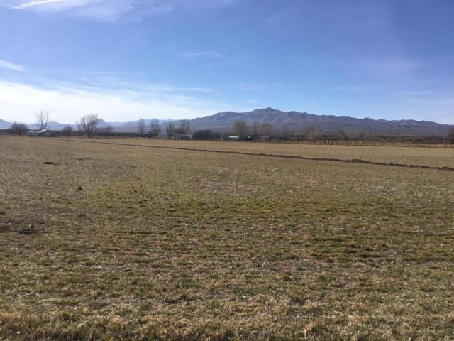Kruse Farm, San Acacia, NM 87831 (MLS #910887) :: Campbell & Campbell Real Estate Services
