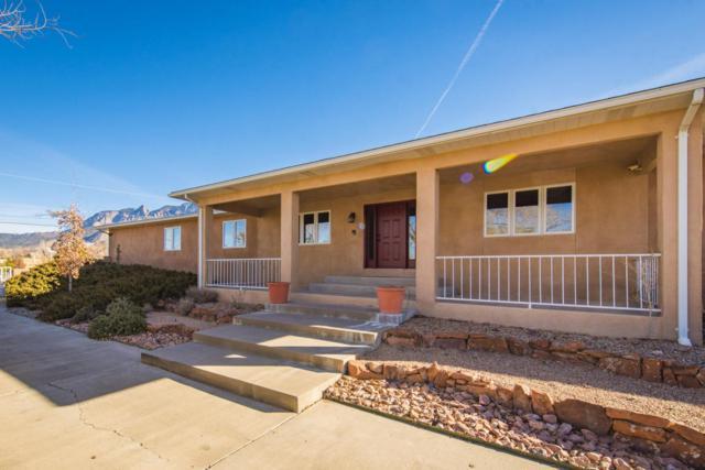 12401 Pino Avenue NE, Albuquerque, NM 87122 (MLS #910929) :: Your Casa Team
