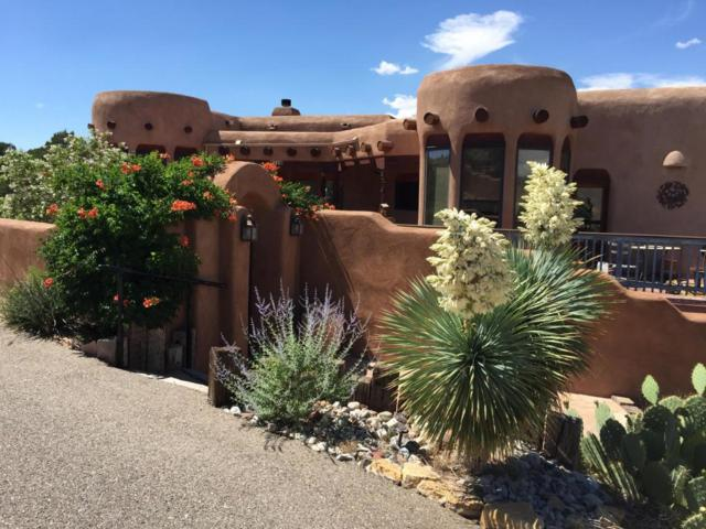 25 Vista De Oro, Placitas, NM 87043 (MLS #910974) :: Will Beecher at Keller Williams Realty