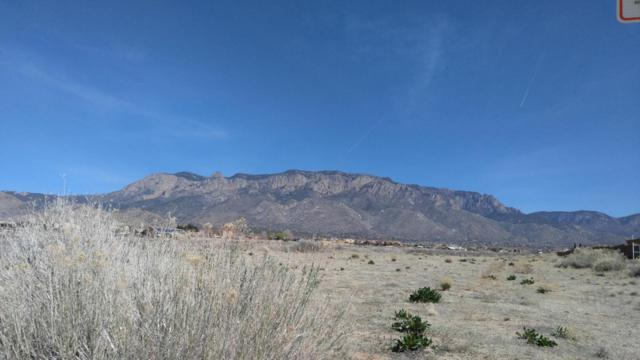 Alameda Boulevard NE, Albuquerque, NM 87122 (MLS #910999) :: Your Casa Team