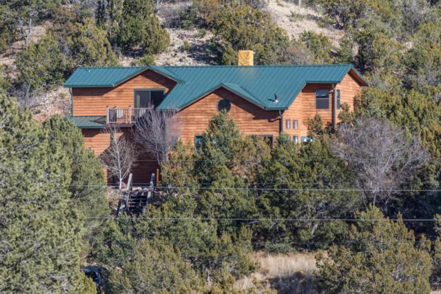 43 Riders Road, Sandia Park, NM 87047 (MLS #911097) :: Will Beecher at Keller Williams Realty