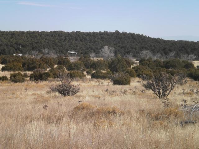 Lot 3 Sandia Ridge Estates, Tijeras, NM 87059 (MLS #911140) :: Will Beecher at Keller Williams Realty