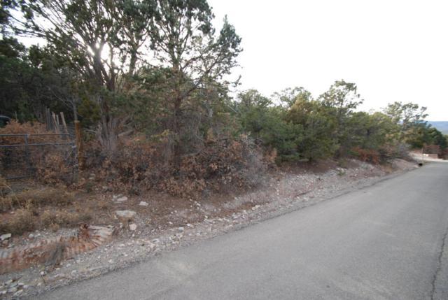 39 Gilbert Place, Sandia Park, NM 87047 (MLS #911236) :: Will Beecher at Keller Williams Realty