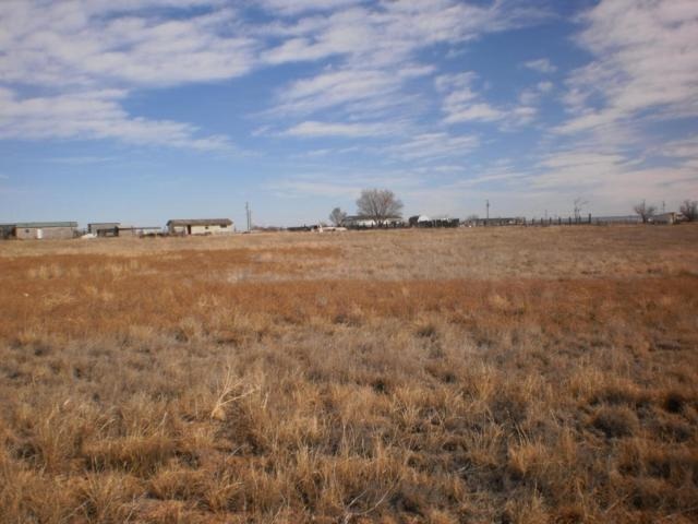Capitan, Moriarty, NM 87035 (MLS #911339) :: The Bigelow Team / Red Fox Realty
