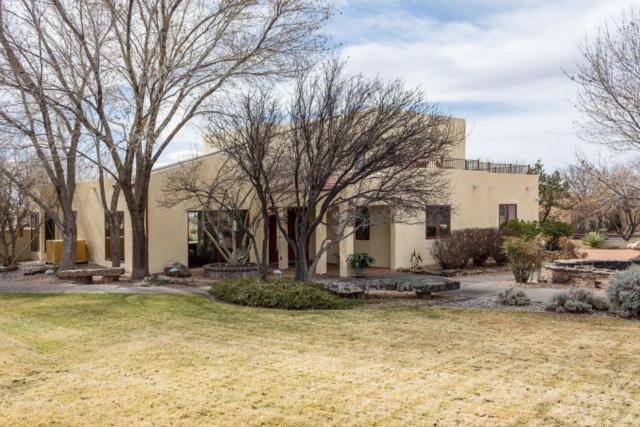 11804 Modesto Avenue NE, Albuquerque, NM 87122 (MLS #911363) :: Your Casa Team