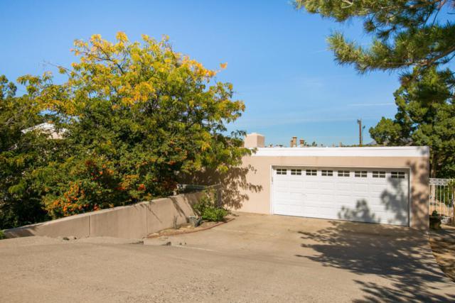 907 Warm Sands Drive SE, Albuquerque, NM 87123 (MLS #911508) :: Your Casa Team