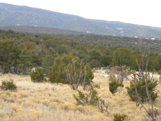 5 Canon Escondido Place, Sandia Park, NM 87047 (MLS #911524) :: Your Casa Team