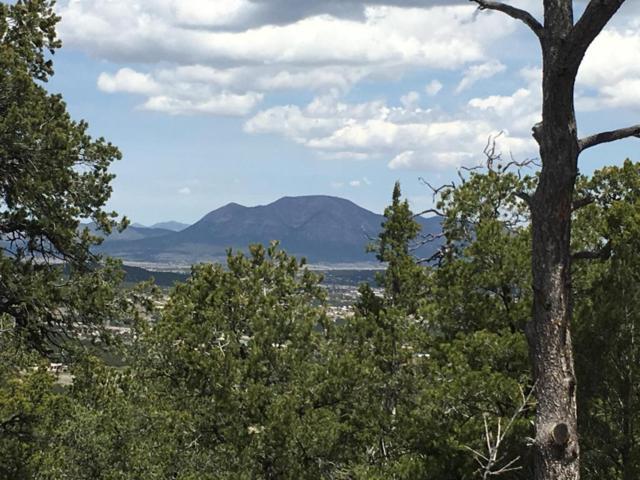 215 Via Sedillo Road, Tijeras, NM 87059 (MLS #911534) :: Will Beecher at Keller Williams Realty