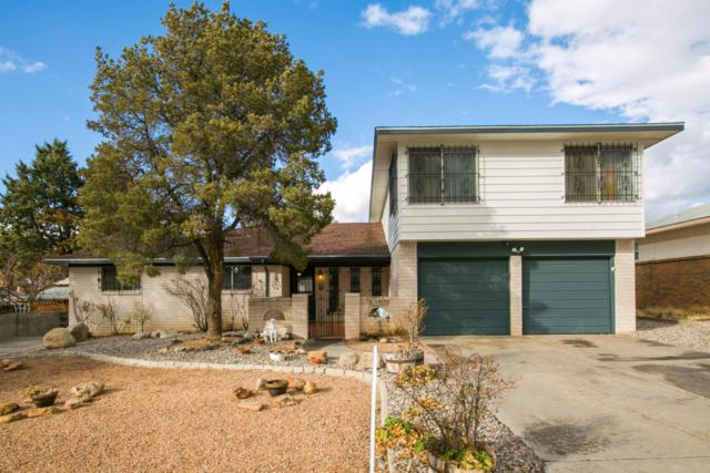 12533 Apache Place NE, Albuquerque, NM 87112 (MLS #911539) :: Campbell & Campbell Real Estate Services