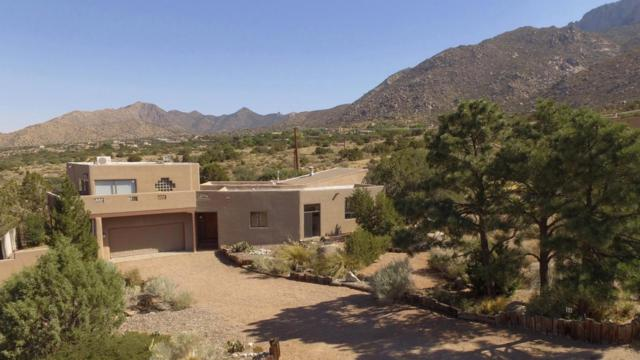 34 Cedar Hill Place NE, Albuquerque, NM 87122 (MLS #911820) :: Your Casa Team