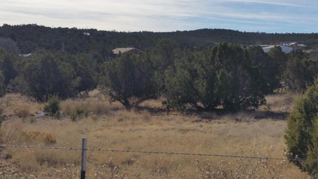 9 A Camino Derecho, Edgewood, NM 87015 (MLS #911947) :: Campbell & Campbell Real Estate Services