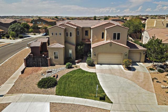 1605 Western Hills Drive SE, Rio Rancho, NM 87124 (MLS #912357) :: Your Casa Team