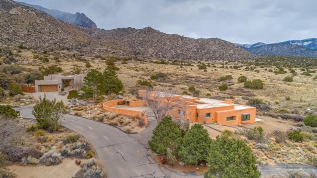 66 Pinon Hill Place NE, Albuquerque, NM 87122 (MLS #912532) :: Your Casa Team