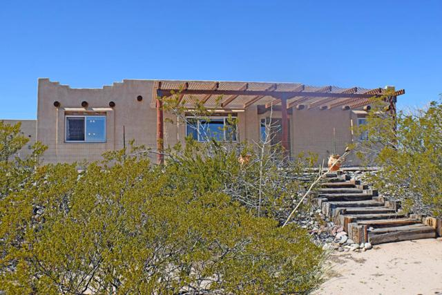 104 Mustang Road, Elephant Butte, NM 87935 (MLS #912691) :: Will Beecher at Keller Williams Realty