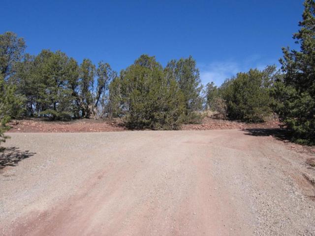 4 Juniper Ridge Road, Tijeras, NM 87059 (MLS #912828) :: Your Casa Team