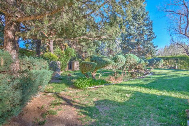 8633 Rio Grande Boulevard NW, Los Ranchos, NM 87114 (MLS #912968) :: Your Casa Team