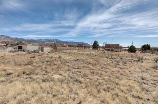 12224 Elena Drive NE, Albuquerque, NM 87122 (MLS #913094) :: Your Casa Team