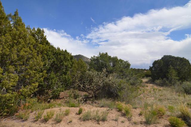 Cir Drive NE, Albuquerque, NM 87122 (MLS #913132) :: Your Casa Team