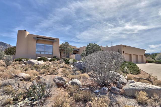 323 Paint Brush Drive NE, Albuquerque, NM 87122 (MLS #913141) :: Your Casa Team