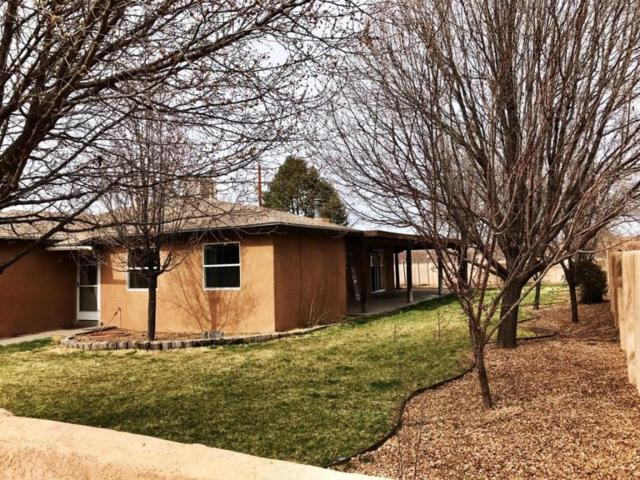 151 Orchard Lane, Corrales, NM 87048 (MLS #913186) :: Your Casa Team