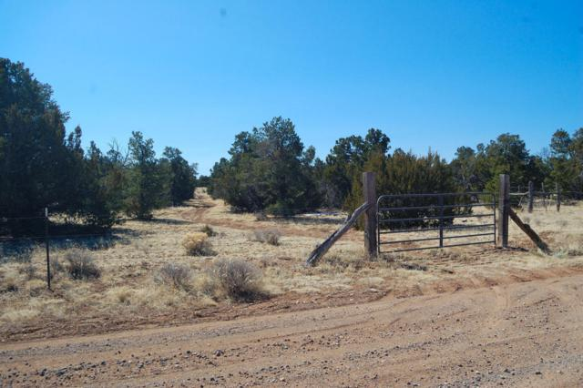 Joyner Ranch, Fence Lake, NM 87315 (MLS #913334) :: Campbell & Campbell Real Estate Services