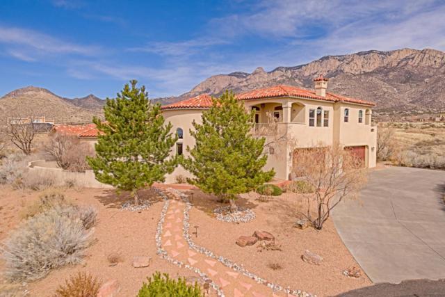 11801 Coyote Run Road NE, Albuquerque, NM 87122 (MLS #913395) :: Your Casa Team