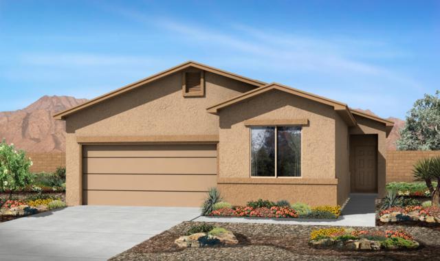 1031 Grace Court NE, Rio Rancho, NM 87144 (MLS #913447) :: Will Beecher at Keller Williams Realty