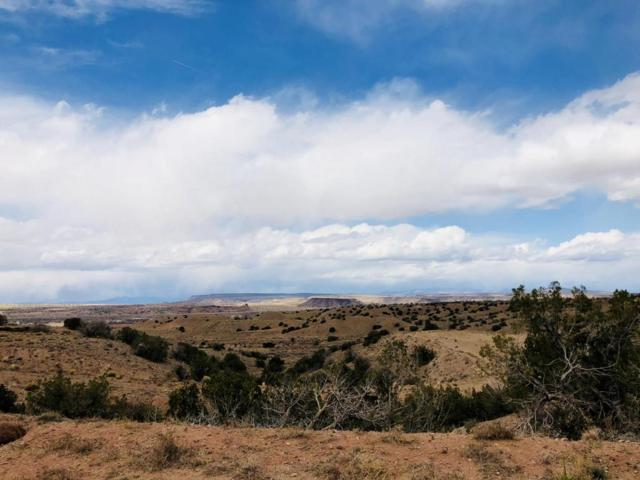 Lot 37A-P5 Mimbres Court, Placitas, NM 87043 (MLS #913456) :: Campbell & Campbell Real Estate Services