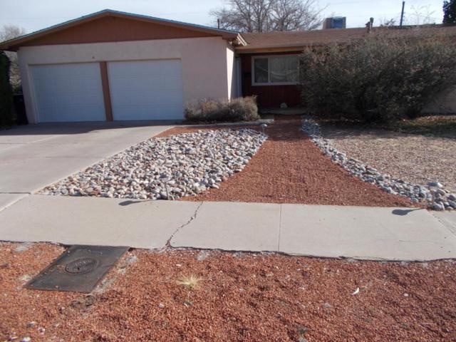 10308 Arvilla Avenue NE, Albuquerque, NM 87111 (MLS #913509) :: Your Casa Team
