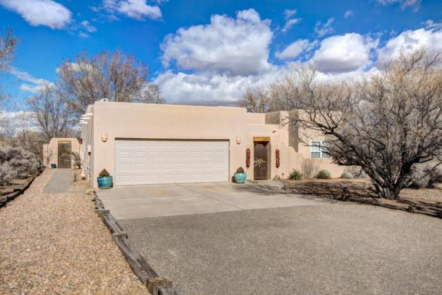 107 Madeline Court, Corrales, NM 87048 (MLS #913515) :: Your Casa Team