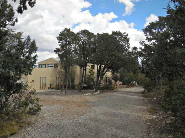 2 La Dolce Vita, Tijeras, NM 87059 (MLS #913516) :: Your Casa Team