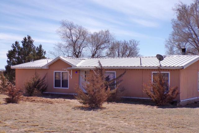 11 Steeldust Avenue, Moriarty, NM 87035 (MLS #913540) :: Will Beecher at Keller Williams Realty