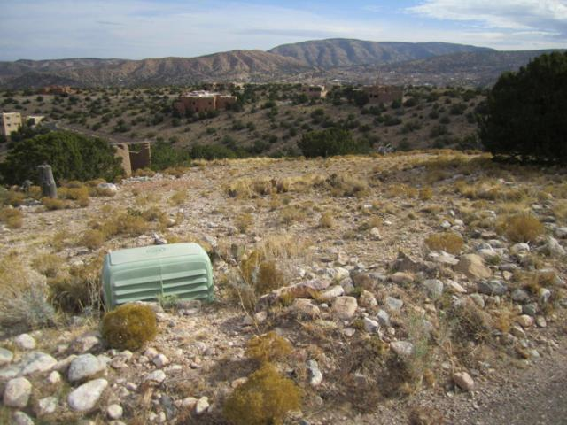 66 Overlook Drive, Placitas, NM 87043 (MLS #914078) :: Campbell & Campbell Real Estate Services