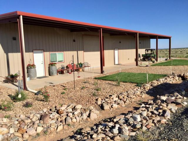 8911 State Highway 55, Estancia, NM 87016 (MLS #914130) :: Will Beecher at Keller Williams Realty