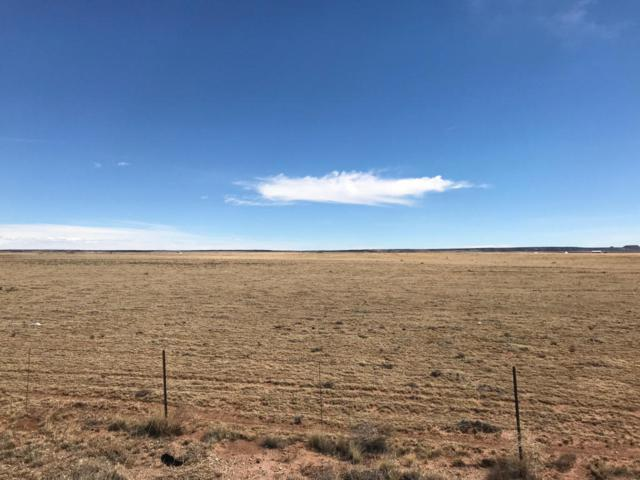 3940 Highway 41, Stanley, NM 87056 (MLS #914340) :: Campbell & Campbell Real Estate Services