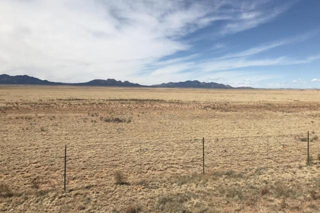 3915 Nm 41, Stanley, NM 87056 (MLS #914351) :: Campbell & Campbell Real Estate Services