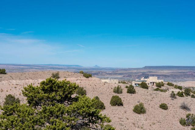 Camino Zia, Placitas, NM 87043 (MLS #914603) :: Your Casa Team