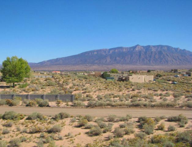 6000 Epazote NE, Rio Rancho, NM 87144 (MLS #914805) :: Will Beecher at Keller Williams Realty