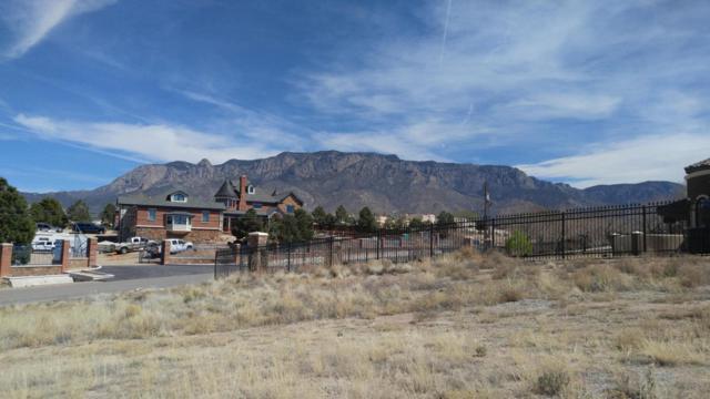 Ranchitos Avenue NE, Albuquerque, NM 87122 (MLS #914858) :: Your Casa Team