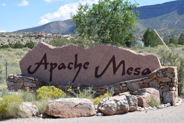 Lot 5 Apache Mesa Road, Placitas, NM 87043 (MLS #914965) :: Campbell & Campbell Real Estate Services