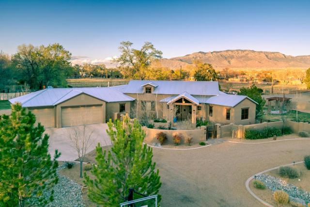 727 San Juan Place, Los Ranchos, NM 87107 (MLS #915017) :: Your Casa Team