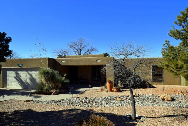1105 Wagon Train Drive SE, Albuquerque, NM 87123 (MLS #915085) :: Your Casa Team