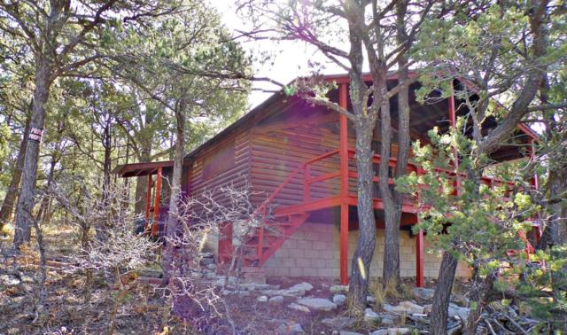 3 Dove Road, Tijeras, NM 87059 (MLS #915212) :: Campbell & Campbell Real Estate Services