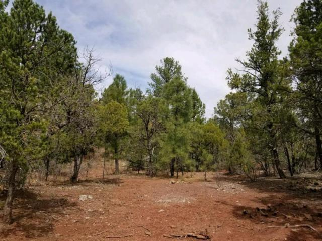 0 Ponderosa Drive, Cedar Crest, NM 87008 (MLS #915386) :: Campbell & Campbell Real Estate Services