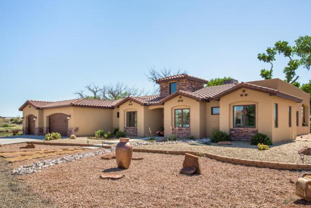 814 Sandoval Lane, Bernalillo, NM 87004 (MLS #915434) :: Campbell & Campbell Real Estate Services