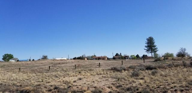 East Side Timan Park, Rio Communities, NM 87002 (MLS #915496) :: Campbell & Campbell Real Estate Services