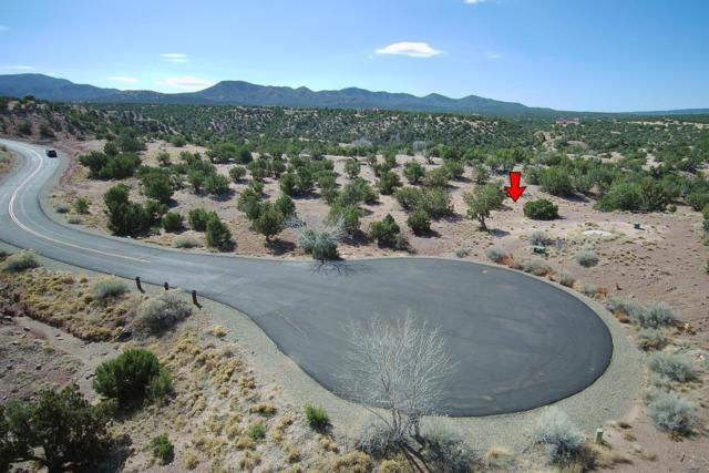 Gold Mine Trail, Sandia Park, NM 87047 (MLS #915574) :: Will Beecher at Keller Williams Realty