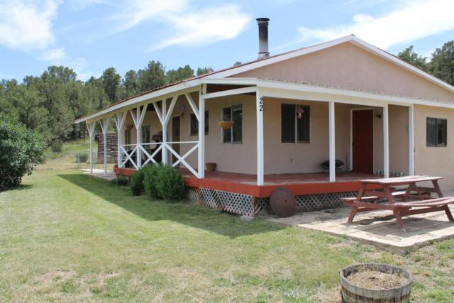 22 Old Gallina Road, Regina, NM 87046 (MLS #915599) :: Campbell & Campbell Real Estate Services